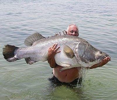 Välkommen att prova fiskelyckan i Knivtjärn!